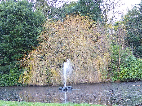 48 Sefton Park fountain