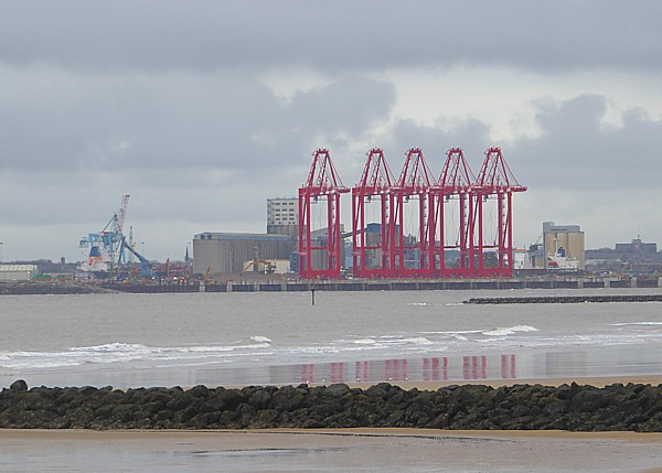 49 New Brighton megamax cranes