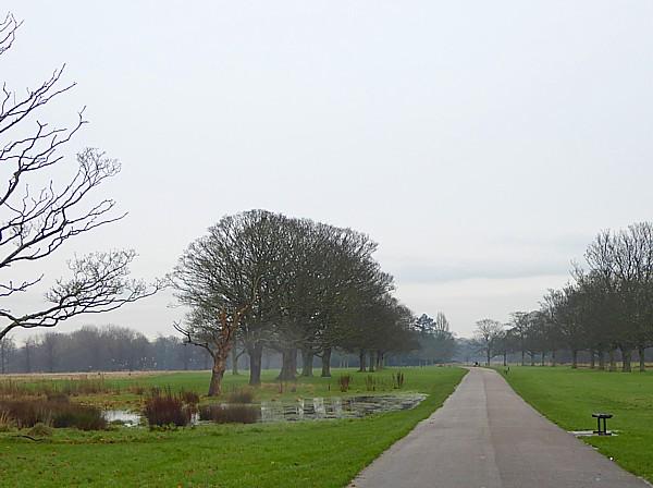 50 Croxteth long walk