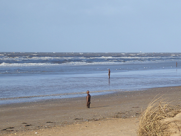 05 Waterloo beach