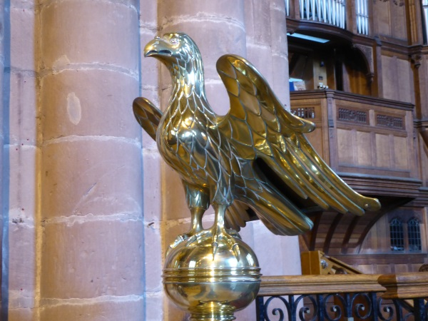 08 Chester golden eagle