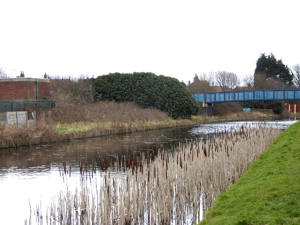 09 Rimrose canal view