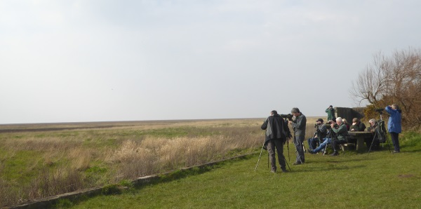 10 Parkgate birdwatchers