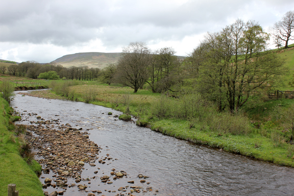 MNA Stocks River Hodder