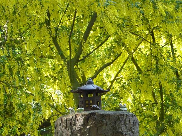 21 Seacombe frog pagoda