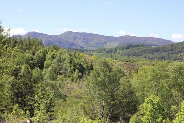 MNA Gwydyr Forest Creigiau Gleision1