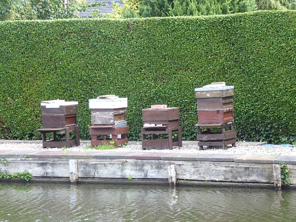 28 Maghull beehives