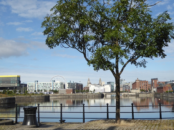 35 Biennial dock view