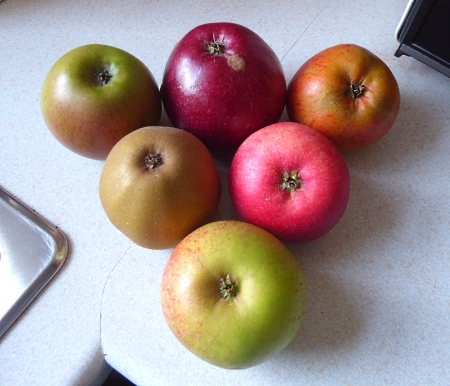 38-apples-six-apples