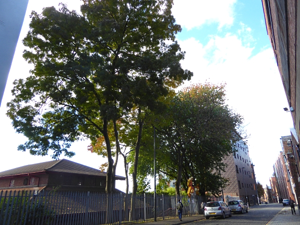 39-centre-henry-street